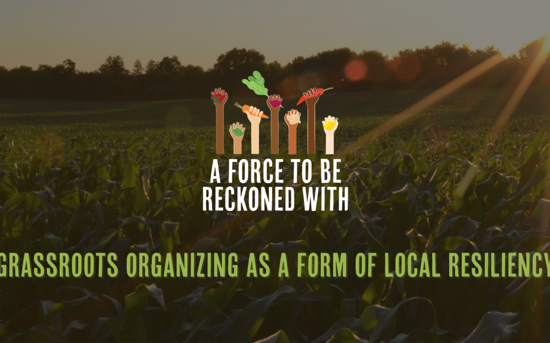 Recap: Grassroots Organizing as a Form of Local Resiliency