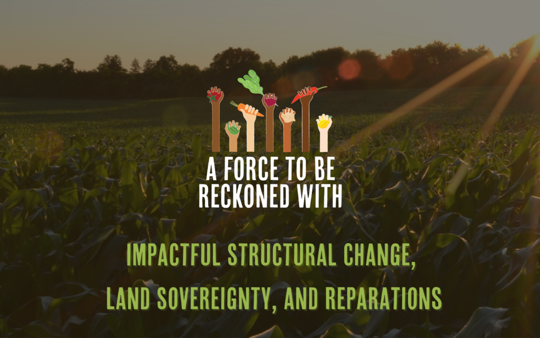 Recap: Impactful Structural Change, Land Sovereignty, and Reparations